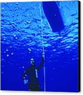 Free-diver Canvas Print by Alexis Rosenfeld
