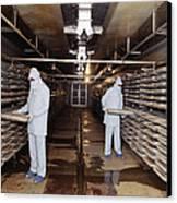 Microbe Fermentation Unit Canvas Print by Volker Steger