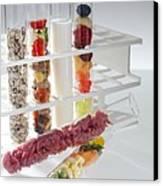 Balanced Diet Canvas Print by Tek Image