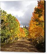 Rocky Mountain Fall Canvas Print by Mark Smith