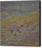 A Close-up Of A Parking Lot Oil Slick Canvas Print by Joel Sartore