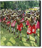 A Group Of New Guinean Men Performing Canvas Print by Klaus Nigge