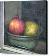 A Pair Canvas Print by Brenda Bryant