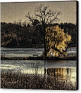A Place To Think Canvas Print by Thomas Young