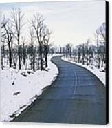 A Road Winds Through A Fire-damaged Canvas Print by Rich Reid