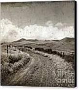 A Rural Path In Auvergne. France Canvas Print by Bernard Jaubert