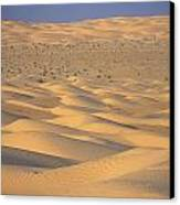 A Sea Of Dunes In The Sahara Desert Canvas Print by Stephen Sharnoff