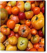 A Variety Of Fresh Tomatoes - 5d17812-long Canvas Print by Wingsdomain Art and Photography