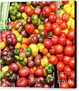 A Variety Of Fresh Tomatoes And Celeries - 5d17901 Canvas Print by Wingsdomain Art and Photography