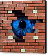 Abstract Of Eye Looking Through Hole In Brick Wall Canvas Print by Mehau Kulyk