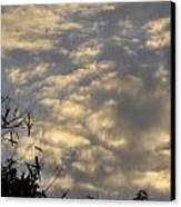 After The Storm Canvas Print by Sandy Poore