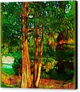 Afternoon Delight Canvas Print by Judi Bagwell