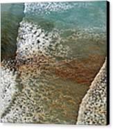 Algal Bloom Canvas Print by Peter Chadwick