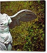 Ancient Flight Canvas Print by Nichole Leighton