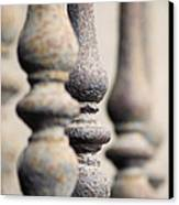Ancient Spindles Canvas Print by Terry Ellis
