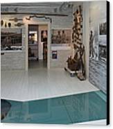 Antiques In Museum Room Canvas Print by Jaak Nilson
