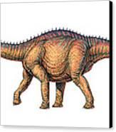 Apatosaurus Dinosaur Canvas Print by Joe Tucciarone