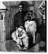 Arctic Explorer And Dogs, 19th Century Canvas Print by