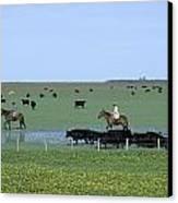 Argentine Gauchos, Or Cowboys, Herd Canvas Print by James P. Blair