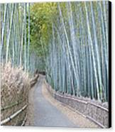 Asia Japan Kyoto Arashiyama Sagano Canvas Print by Rob Tilley