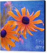 Attachement - S11at01d Canvas Print by Variance Collections