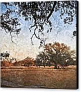 Audubon Golf Course Canvas Print by Ray Devlin