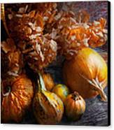 Autumn - Gourd - Still Life With Gourds Canvas Print by Mike Savad