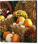 Autumn Bounty Canvas Print by Kathy Clark