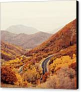 Autumn Colored Trees Along Mountain Road Canvas Print by Www.julia-wade.com