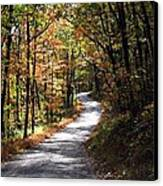 Autumn Country Lane Canvas Print by David Dehner