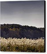 Autumn Grasses - North Carolina Autumn Scene Canvas Print by Rob Travis