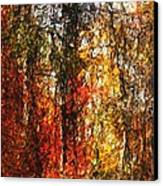 Autumn In The Woods Canvas Print by David Lane