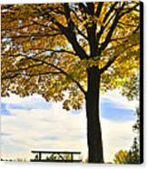Autumn Park Canvas Print by Elena Elisseeva