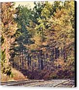 Autumn Railroad Canvas Print by Douglas Barnard