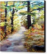Autumn Walk In The Woods Canvas Print by Trudy Morris