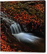Autumn Waterfall Canvas Print by Irinel Cirlanaru