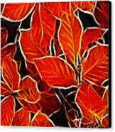 Autums Blood Canvas Print by Stefan Kuhn