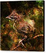 Baby Wren First Fly Canvas Print by J Larry Walker