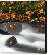 Balance Of The Seasons Canvas Print by Mike  Dawson