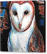 Barn Owl  Canvas Print by Jon Baldwin  Art