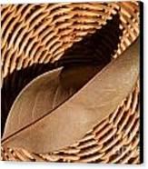 Basket Of Brown Canvas Print by Dan Holm