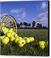 Basket Of Golf Balls Canvas Print by Skip Nall
