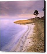 Beach Along Saint Josephs Bay Florida Canvas Print by Tim Fitzharris