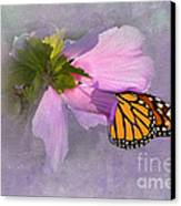 Beautiful In Pink Canvas Print by Betty LaRue