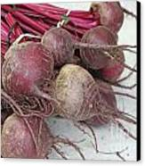 Beets Me Canvas Print by Denise Pohl