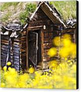 Behind Yellow Flowers Canvas Print by Heiko Koehrer-Wagner