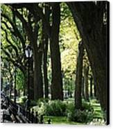Benches Trees And Lamps Canvas Print by Rob Hans