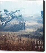 Big Meadows In Winter Canvas Print by Thomas R Fletcher
