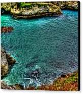 Big Sur Canvas Print by Craig Incardone