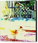 Bird Bath Canvas Print by YoMamaBird Rhonda
